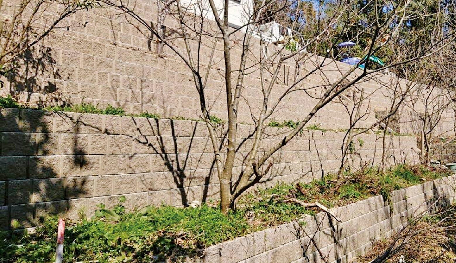 樹木と自然に溶け込んだ石垣_ABリテイン