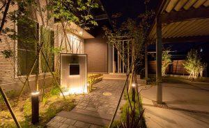 パエリアティンタを使用した照明が美しいナイトガーデン